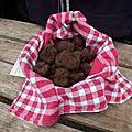 la truffe noire du quercy
