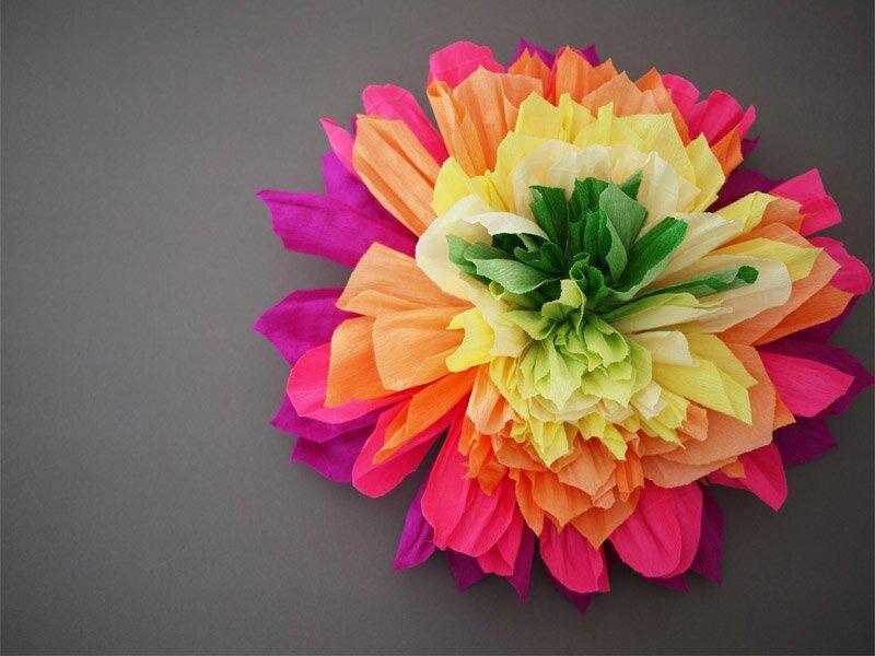 crepeflower16