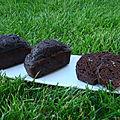 Gateau chocolat, banane et courgettes