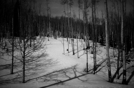 05_Dixie_National_Forest