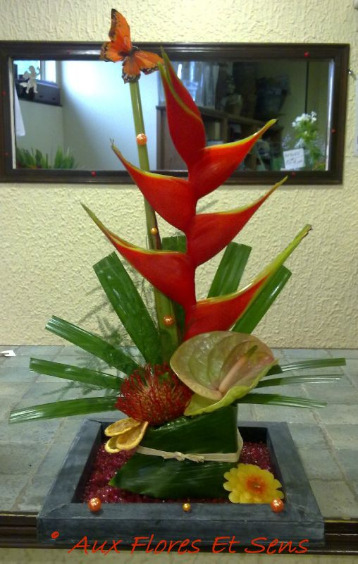 Composition Heliconia