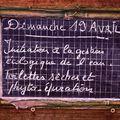 7) PHYTO-ASSAINISSEMENT : 4 ème journée...