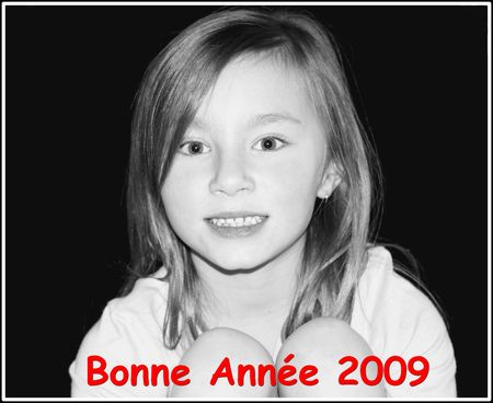 bonne_ann_e_2009