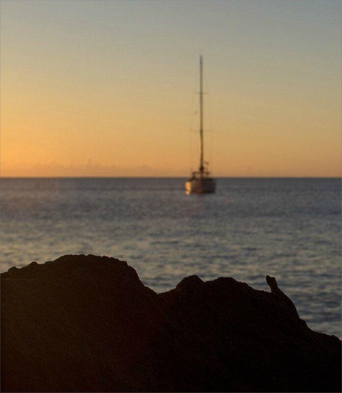 Martinique J7 600 101217 10 lézard bateau