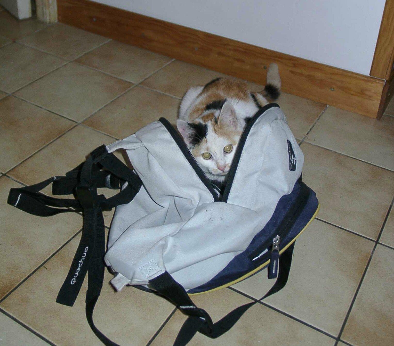 Dans mon sac