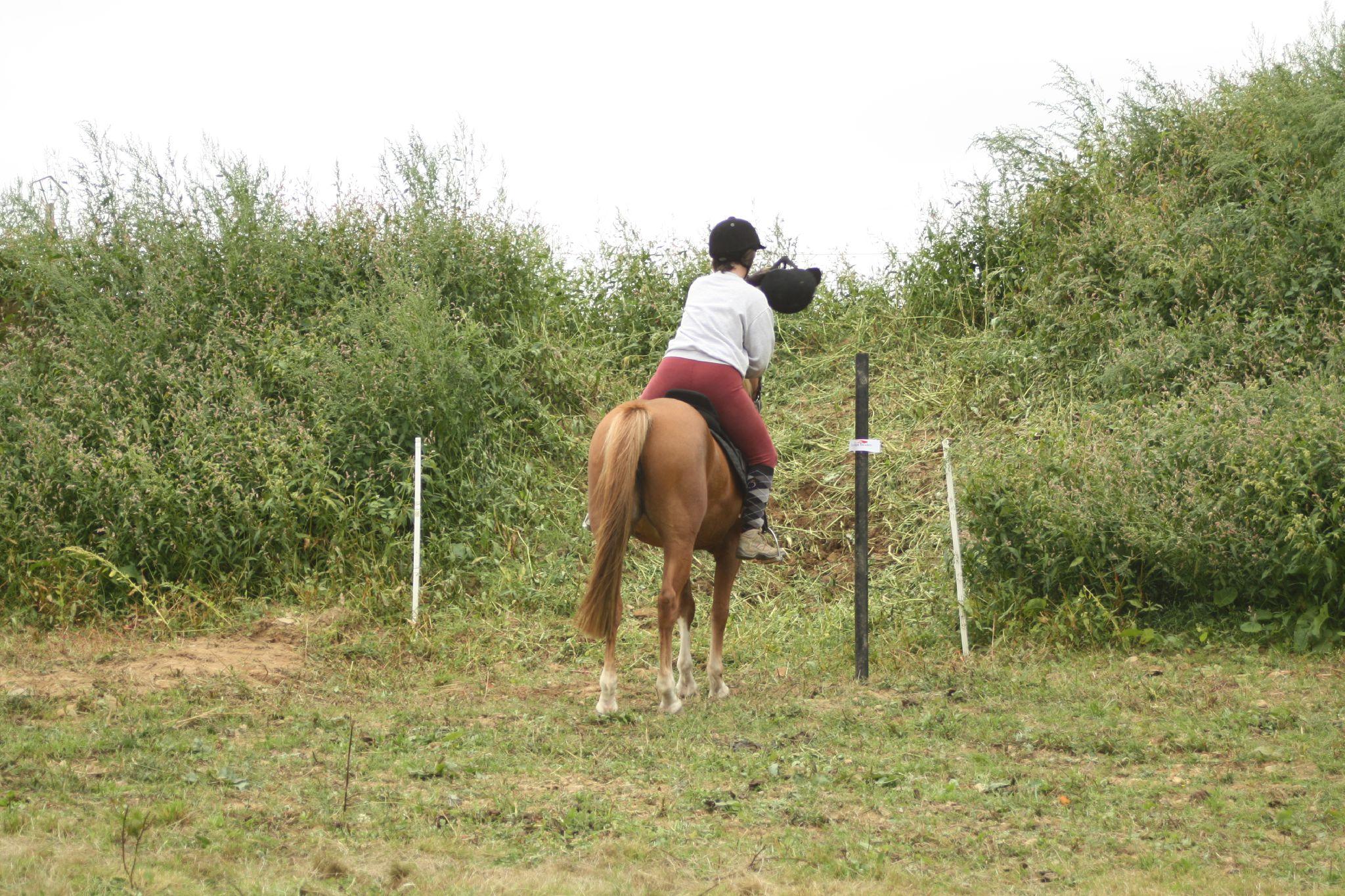 équitation de pleine nature - rallye équestre (179)