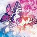 Butterfly (124)