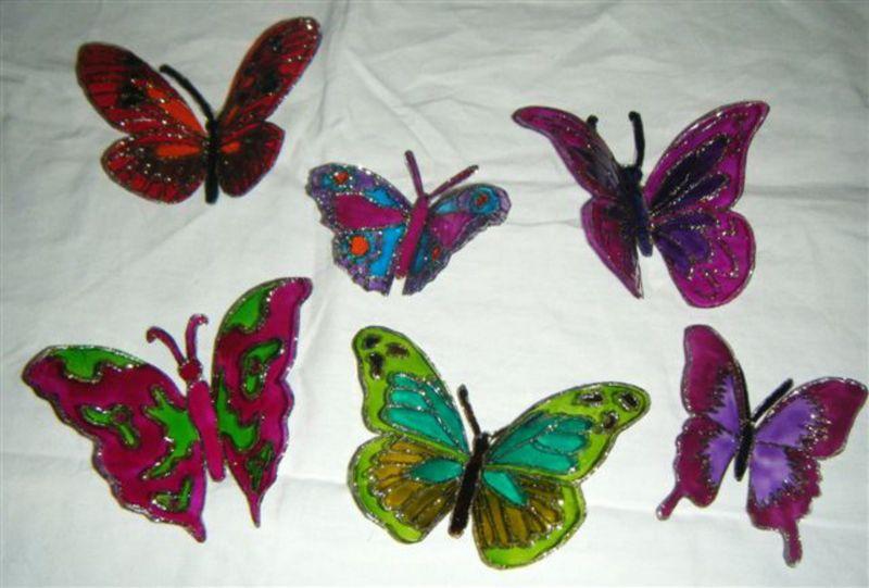 papillons à vendre