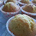 Gâteau de base pour cupcakes