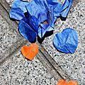 Coeurs confettis_0037