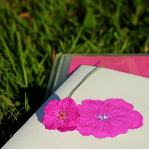 fleur et dessin''