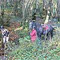 balade liberté - Mesnil Ozenne à cheval (8)