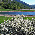 Le printemps du lac de siguret (saint-andré d'embrun)