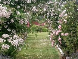 Jardin de Rocquelin Idée de visite