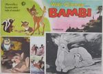 bambi_photo_mexique_3