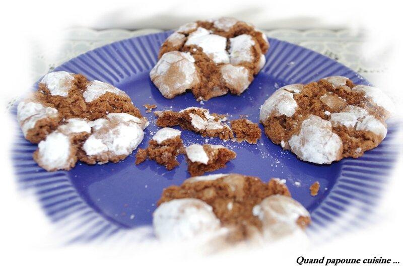 crinkles au chocolat-22