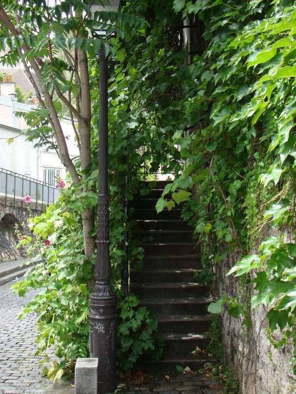 33-Escalier