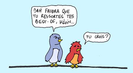 cuicui3