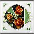 Jardin de mimou - les roses