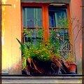 Inspiration parisiennes...d''ici et d'ailleurs...