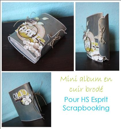 sneak_peak_mini_album_cuir_brod_