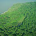 Savanes de Kourou - CSG- vues du ciel