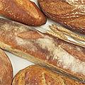 Que trouve-t-on dans un morceau de pain ?