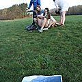 Le making of de la carte de voeux 2014