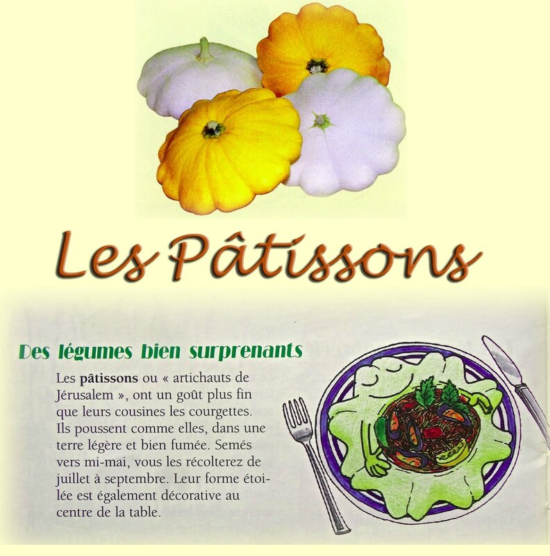 patissons