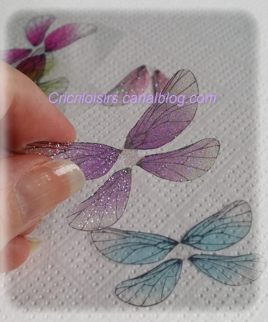 DIY-Ailes transparentes et scintillantes