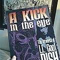 Ll cool dish : a kick in the eye