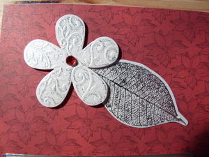 Carte_rouge_papillons