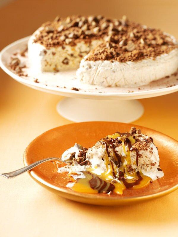 ice-cream-cake-5630ec9213e5c
