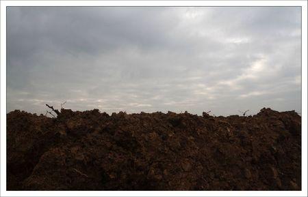 plaine labour ciel gris 281211