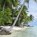 Un motu (Petit îlot)