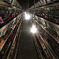Les scandales se suivent et se ressemblent dans l'industrie agroalimentaire