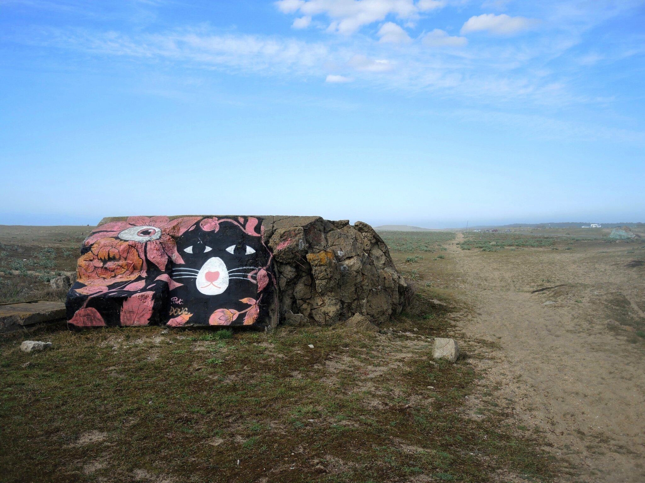 Tarnos, champ des blockhaus, p'tite mimine (40)