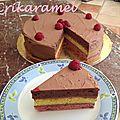 Gâteau chocociframboise