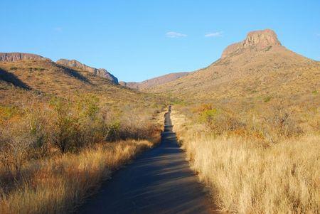 Afrique du Sud (653)