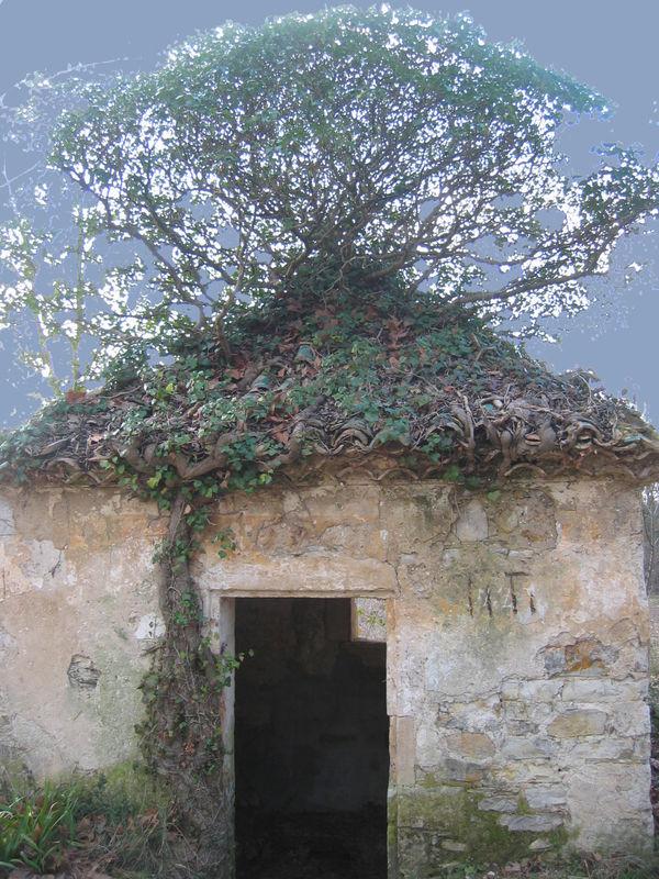 Restinclières .Cabane de vigneron.