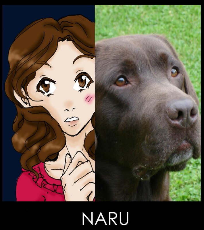 NARU INSTINCT ANIMAL