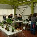 Atelier kokedama aux jardins de beauchamp à marmande