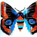 2010_091616-09-10-papillons0020