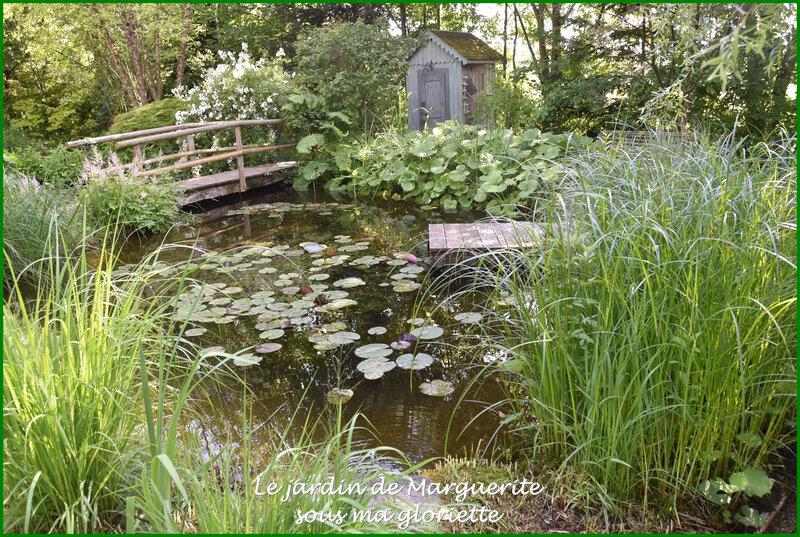 bassin5