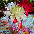 Fiori d'inverno- winter flowers- fleurs d'hiver