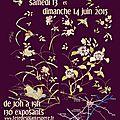 Magnifique fête des plantes ... j'expose au domaine de péré à prisse la charriere 79 les 13 et 14 juin
