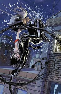 catwoman 1a