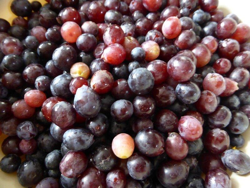 18-raisin (9)
