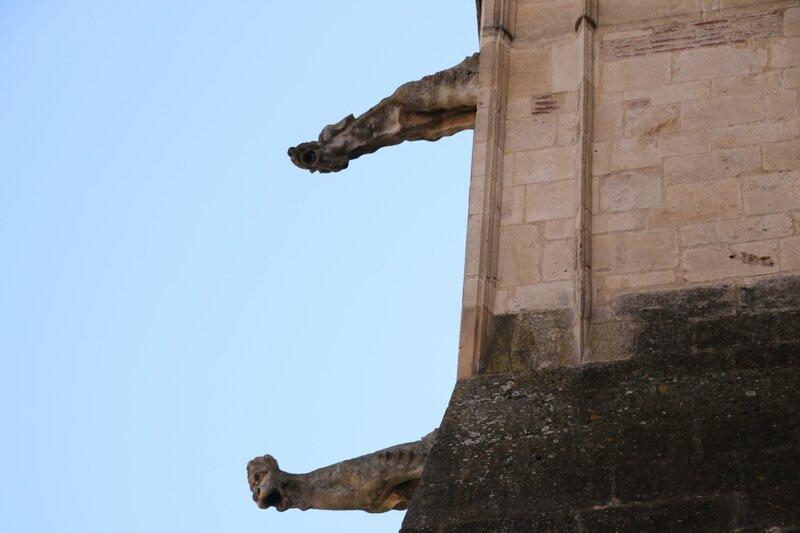 Gargouilles de la cathédrale