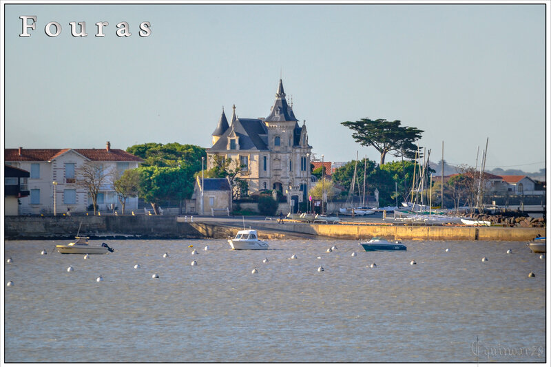 Port de Fouras - ducs d'Aquitaine et comtes de Poitiers - Charente-Maritime